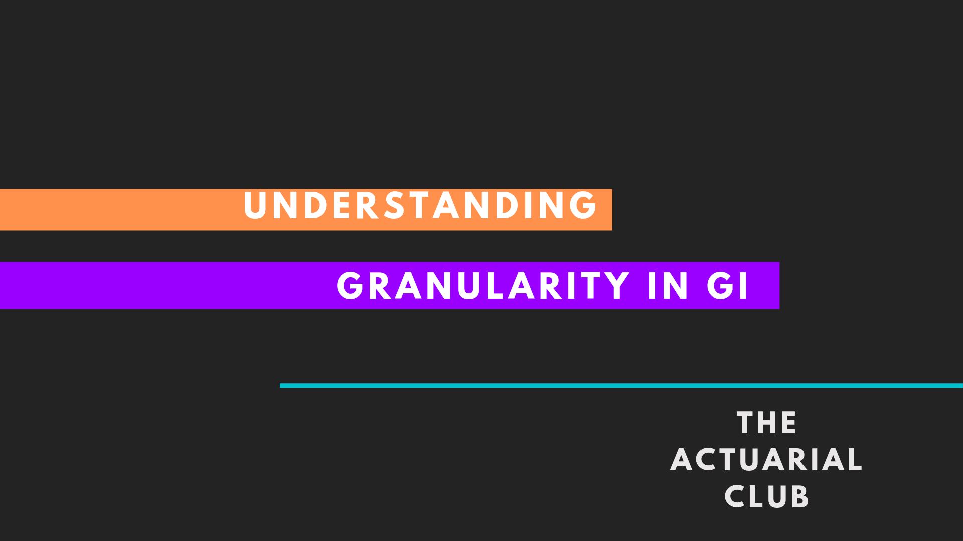 Granularity General Insurance